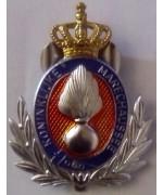 Жетон Военной Полиции Голландии, новый