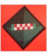 ARGYLL AND SUTHERLAND HIGHLANDERS REGIMENT TRF BADGE GREEN AND BLACK, Б/У ( зелёный и чёрный)