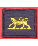 RECOGNITION FLASH BADGE PWRR TIGER Б/У
