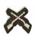 Нашивка Tactics and Weapon Training Instructors армии Великобритании, б/у