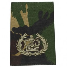 Погон RQMS QMSI армии Великобритании, DPM, новый